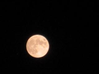 昨日の月.jpg